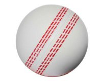 S16 Cricket Stress Ball